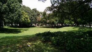 campo-de-santana-6-770